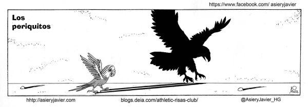 Los periquitos fueron unos pájaros de cuidado en San Mamés. Athletic, Bilbao, Humor, Viñeta.