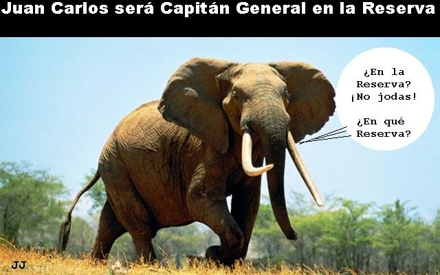 El Rey será Capitán General en la Reserva, preocupación entre los elefantes. Humor.